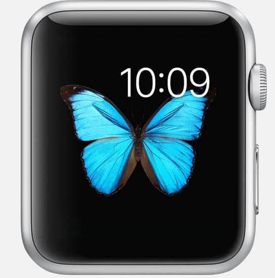 apple iwatch photos