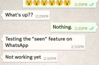 Finally WhatsApp tells you when your messages have been read - 4