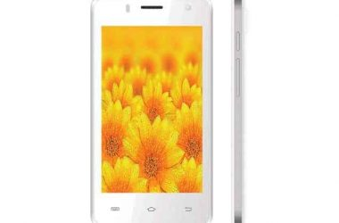 Intex Cloud N IPS With 8-Megapixel Rear Camera Launched at Just Rs. 4,350 - 3